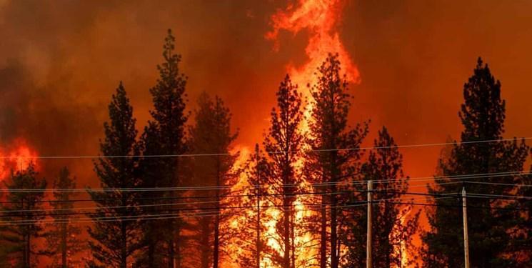 تصاویر ، آتش سوزی مهیب در شمال کالیفرنیا